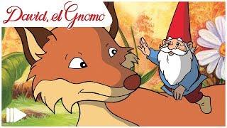 David, El Gnomo - 04 - El Bebé Troll | Episodio Completo |