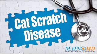 Cat Scratch Disease ¦ Treatment and Symptoms