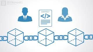 Преимущества и недостатки смарт-контрактов | BitNovosti.com