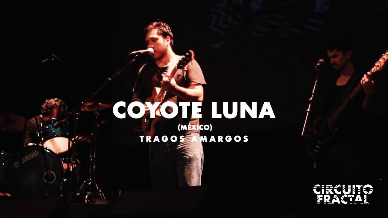 Coyote Luna - Tragos Amargos (En vivo)