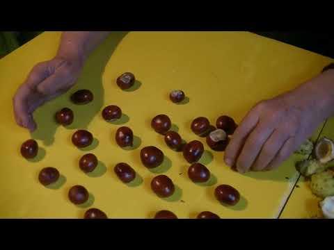 Leczenie zapalenia gruczołu krokowego chlamydią
