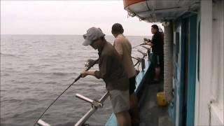 preview picture of video 'Bottom fishing @ Kuching, Sarawak 2012'