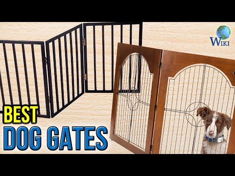 10 Best Dog Gates 2017