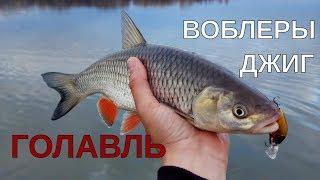ЗА ГОЛАВЛЕМ НА ОКУ В КОНЦЕ ОКТЯБРЯ - Рыбалка со stigan