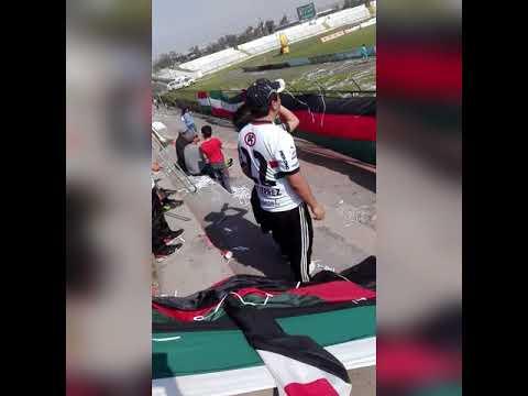 """""""PALESTINO VS TEMUCO 2018/LOS BAISANOS"""" Barra: Los Baisanos • Club: Club Deportivo Palestino"""