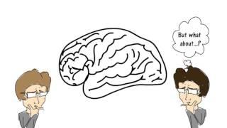 Introduction to Lifespan Psychology - whiteboard animation