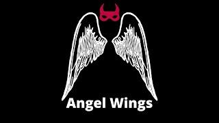 Logan Michael Angel Wings