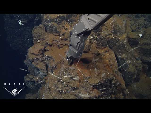 High-tech robots reveal details of the deep