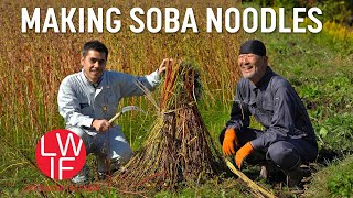Making Soba: Japan's Everyday, Special Occasion Noodle