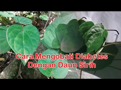"Video Obat Diabetes Herbal : Cara Alami Mengobati Diabetes Dengan ""Manfaat Daun Sirih"""