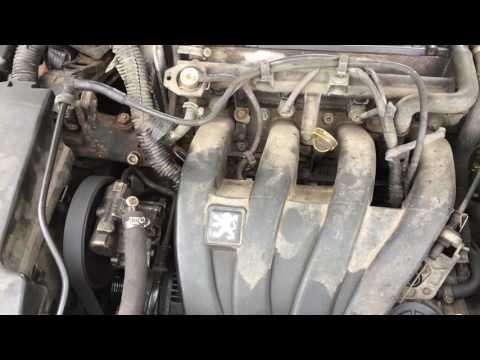 Dass für das Auto das Gas oder das Benzin auf dem Auto besser ist