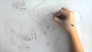 Upstream and Downstream