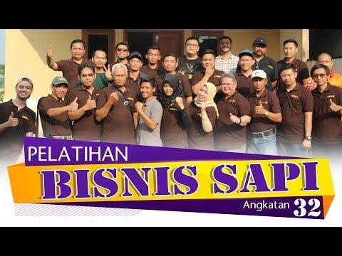 Pelatihan Bisnis Sapi Potong dan Sapi Qurban Angkatan 32 #SAPIBAGUS