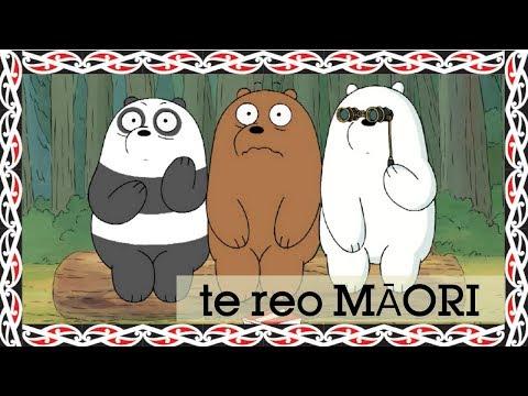 We Bare Bears | Charlie's Opus (Māori) | Cartoon Network