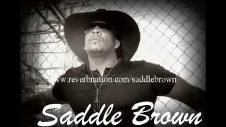 Saddle Brown:  She Ain't You Lyrics