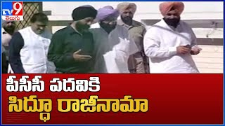 Navjot Singh Sidhu quit as Punjab Congress chief
