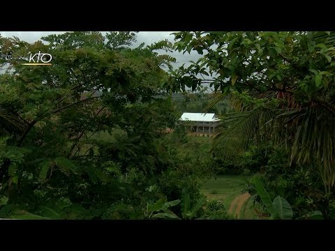 Madagascar : l'hôpital missionnaire de Mananjary