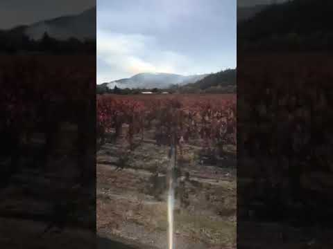 Video Of Lake Sonoma Marina Campground, CA