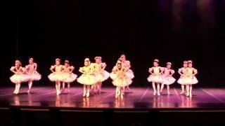 Princesas das Flores - Ballet Vera Bublitz - Indaiatuba/2014
