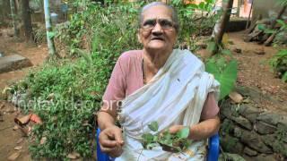 Punarnava - Folk medicine for maintaining blood pressure and Kidney disorders