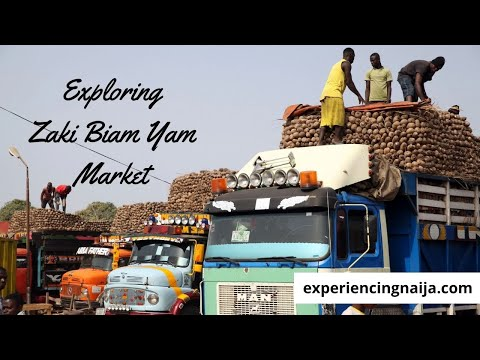 , title : 'Exploring Zaki Biam: The Largest Yam Market in West Africa