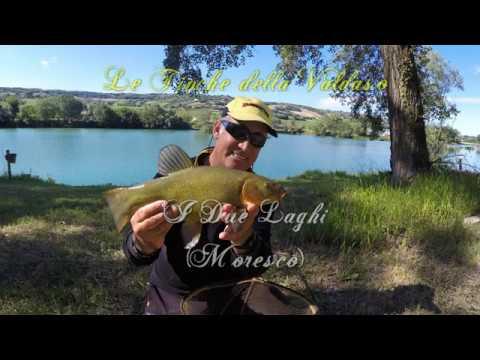 La pesca nel centro di video di Russia