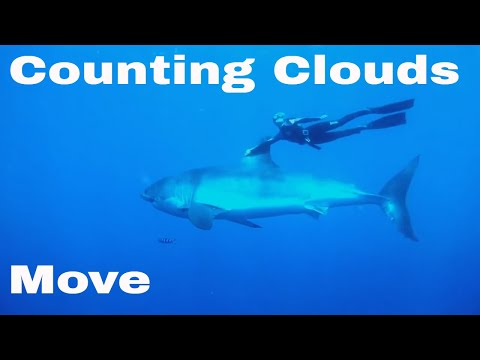 Counting Clouds - Move