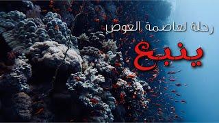 preview picture of video 'رحلة لعاصمة الغوص ( ينبع )  | Dive trip to Yanbu '