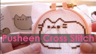 Pusheen Cross Stitch Kit Review [Beginner Cross Stitch]