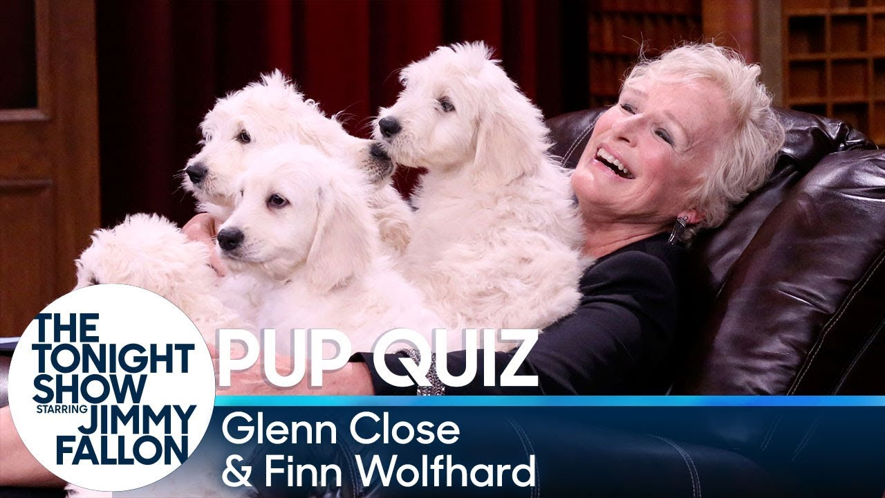 Pup Quiz with Glenn Close and Finn Wolfhard thumbnail