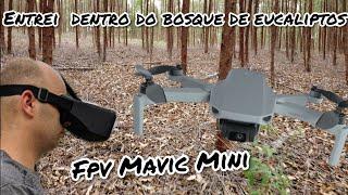 FPV Mavic Mini - olha onde entrei com este drone