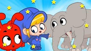 Morphle em Português - dia no zoológico | vídeos de animais | Desenhos para Crianças