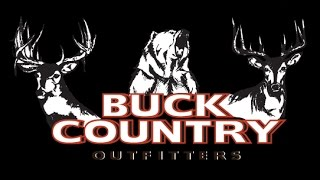 Bear Hunting Outfitter | Buck Country Outfitters Bear Promo 2017