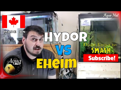 Hydor VS Eheim Pro Canister Filter dB Test | You WON'T Believe This!