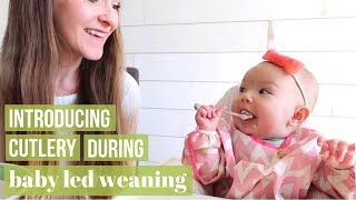 BABY LED WEANING: INTRODUCING A SPOON & FORK