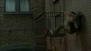 Superhero Movie (2008) Video
