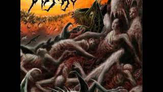 Disgorge - Condemned To Sufferance