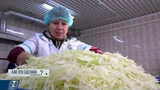 Производство салатов в больших объемах | Как это сделано в Казахстане?