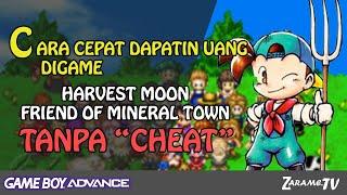 Harvest moon friends of mineral town cheats gba code breaker