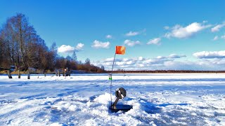 Щука в марте со льда где искать