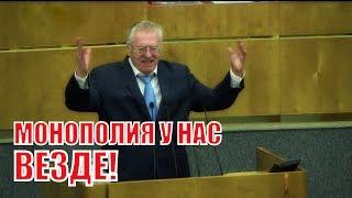 Выступление Жириновского об Основных направлениях кредитно-денежной политики на 2019–2021!