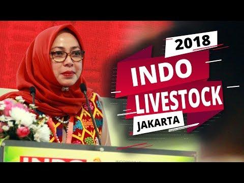 Indo Livestock Pameran Peternakan Terbesar Digelar di Jakarta 2018