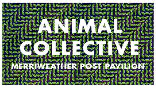 Animal Collective - Summertime Clothes (Edited)