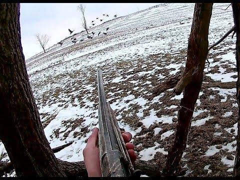 solo-goose-hunt-5-bird-limit-in-3-shots