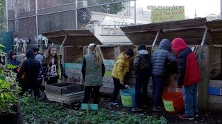 The Edible Schoolyard Project | Education Earth