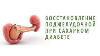 Восстановление поджелудочной железы при сахарном диабете