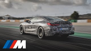BMW M8 Prototype Hot Lap. 360° video.