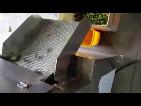 Double Roller Type Lemon Juicer Machine