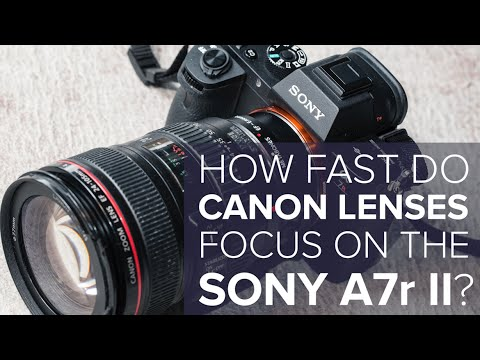Here's How Fast Canon Lenses Focus On The New Sony A7r Mark II