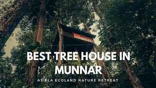 Why Ela Ecoland has the best tree house in Munnar